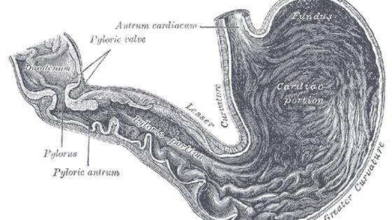 Test oddechowy pomocny w diagnostyce raka żołądka