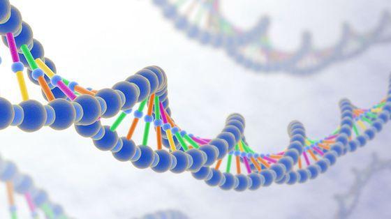 Parkinson: allele sprzyjające rozwojowi choroby