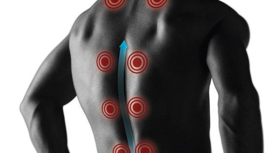 Antybiotyki mogą pomóc w przewlekłym bólu pleców