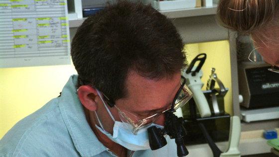 Parkinson: leczenie na bazie komórek macierzystych okazuje się zachęcające u małp
