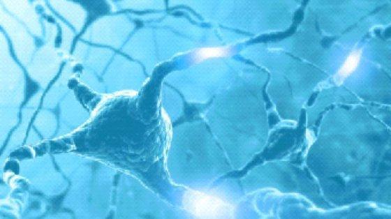 Szczepionka Treg opracowana przez polskich naukowców skuteczna w leczeniu cukrzycy typu 1