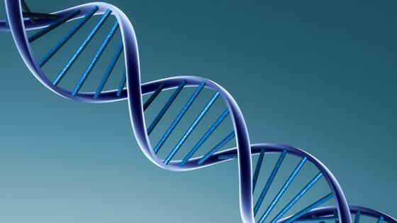 Autyzm: testy genetyczne oceniające ryzyko choroby u rodzeństwa