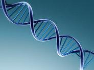 Genetyczne